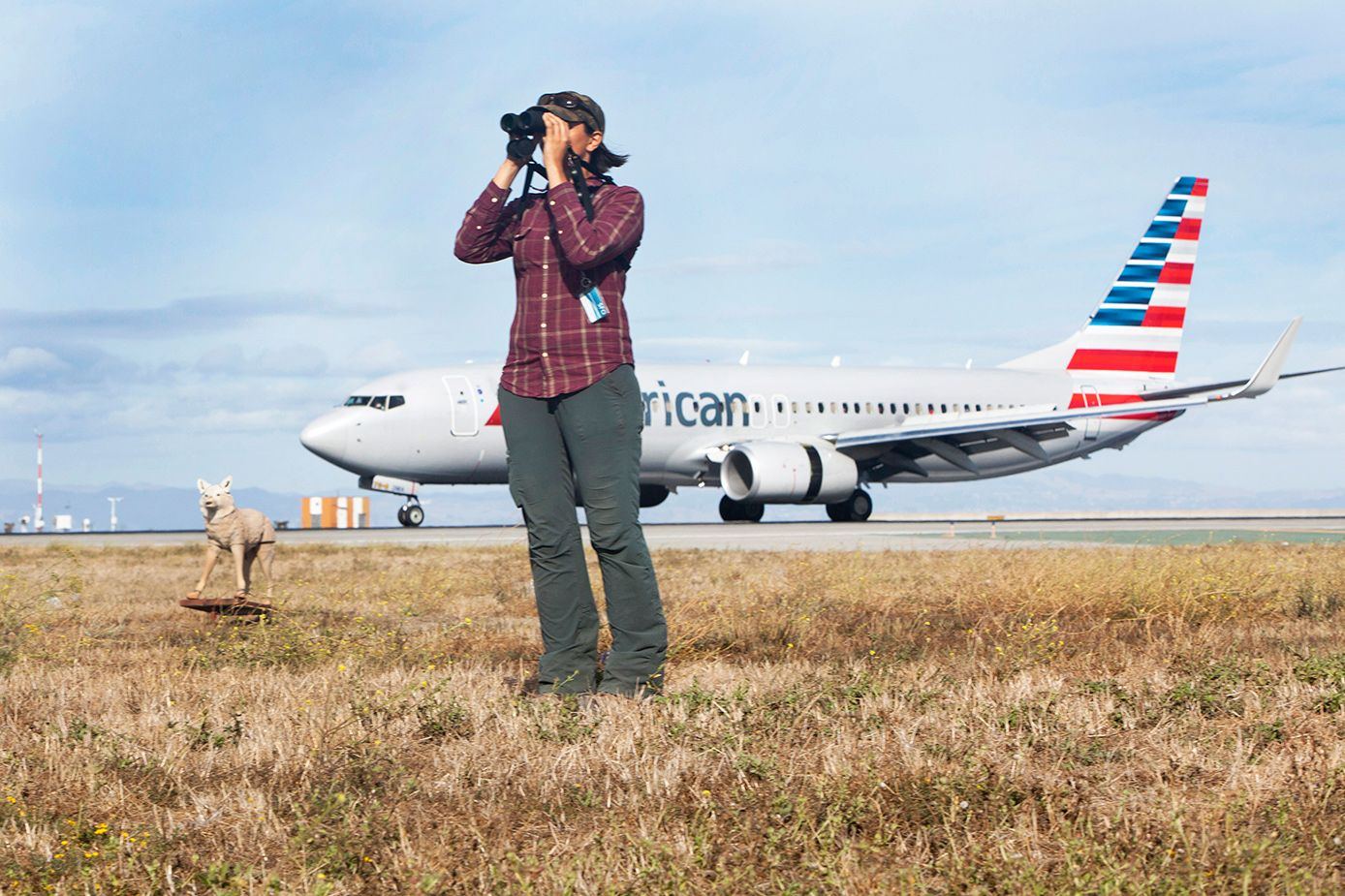 Natalie Reeder, SFO's full-time staff biologist, is part of a 36-person airport safety officer (ASO) team at SFO that has developed a three-tiered plan to keep animals away from flight paths
