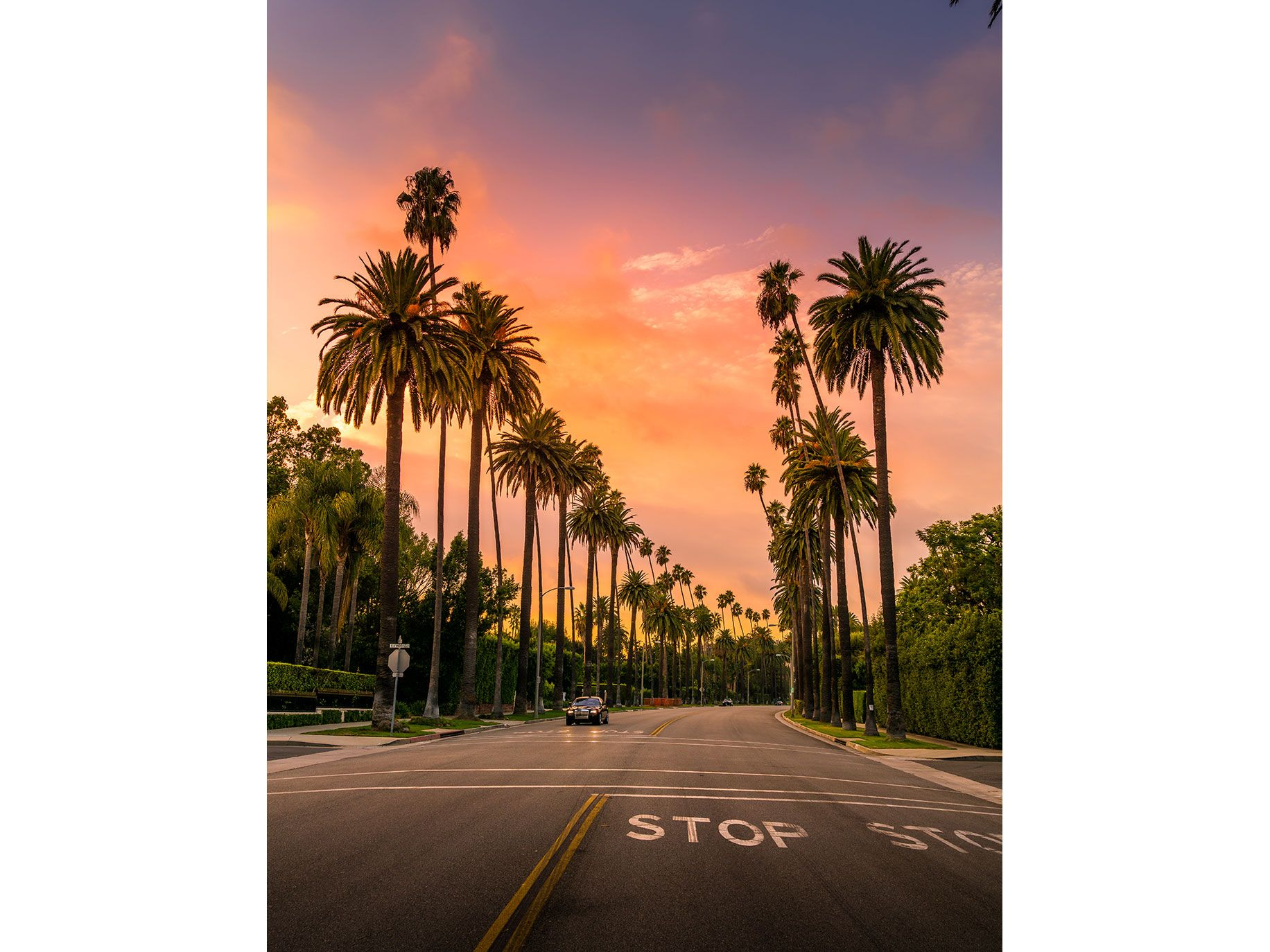 Ramelli loves Beverly Hills because there are no cars on the side of the streets and the palm trees give you an incredible leading line.