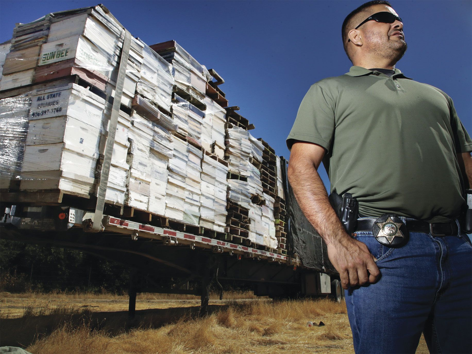 Andres Solis, a detective with the Fresno County Sheriff's office, with a trailer full of stolen and unclaimed beehives.
