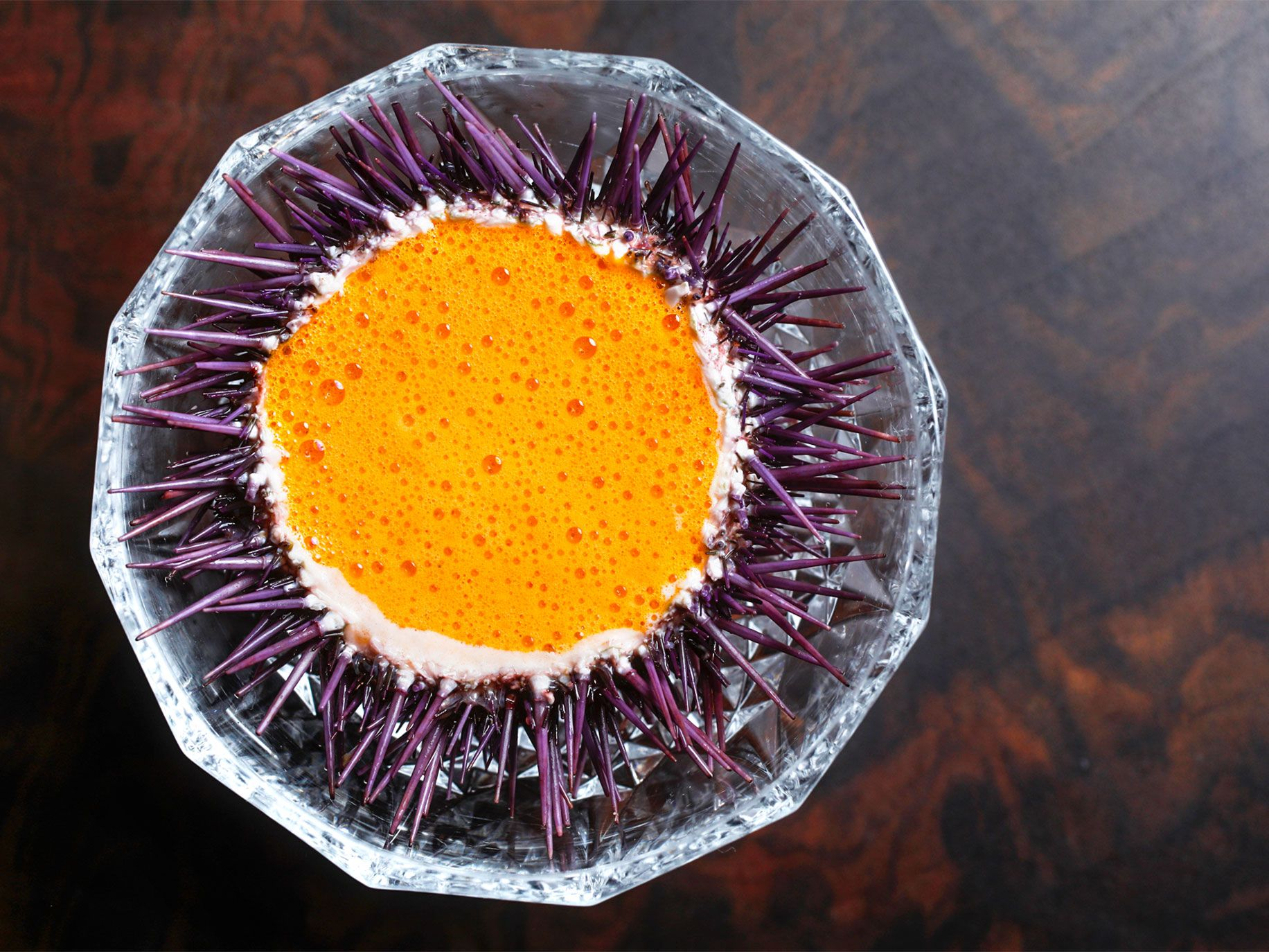 The shell of a sea urchin acts as a bowl for seafood with cauliflower foam and lobster sauce.
