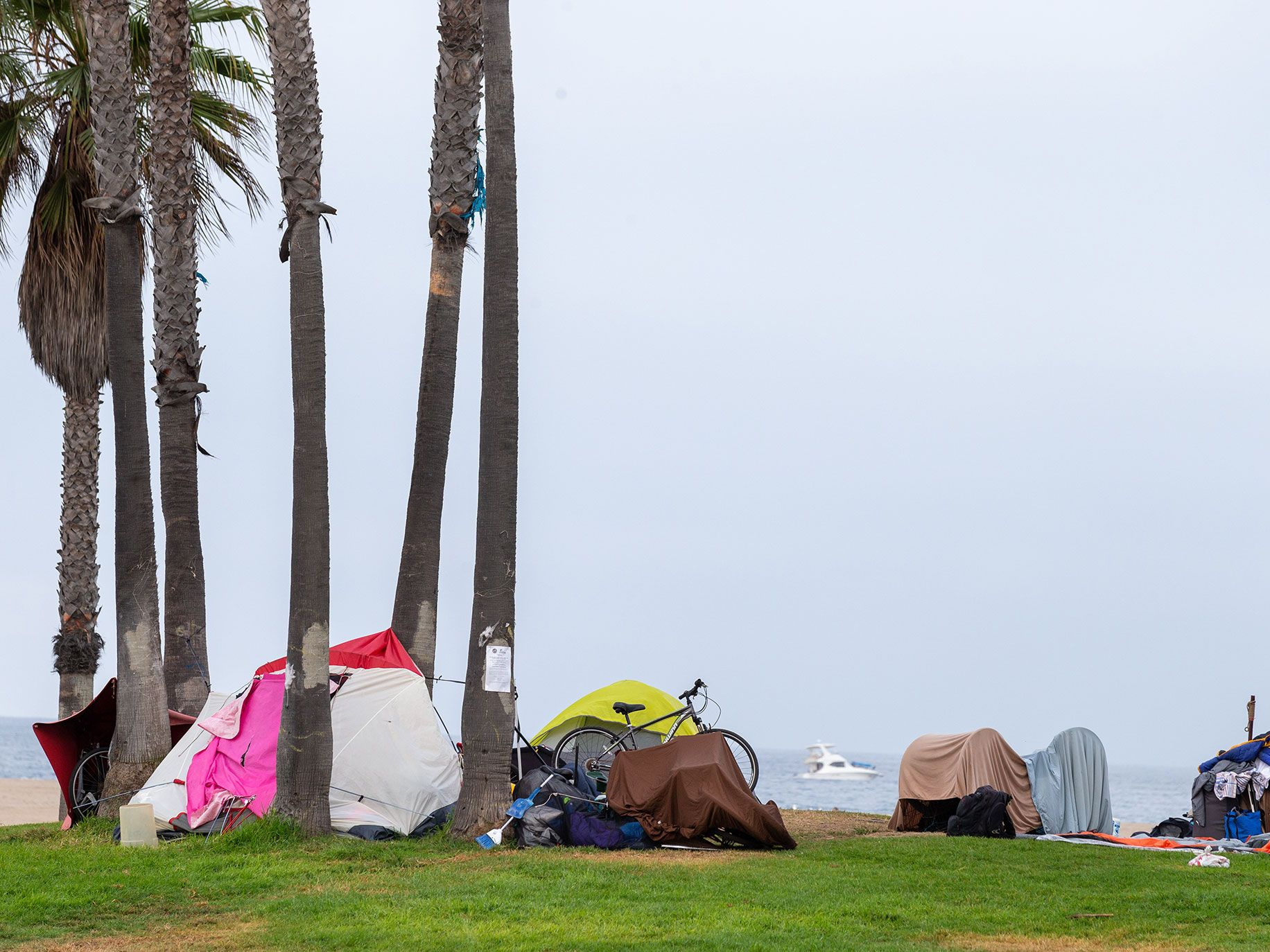 Every night, tents line Venice Beach for miles until just after sunrise, when police force campers to move their belongings.