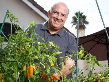 Javier van Oordt cultivates ají chiles in his backyard garden.