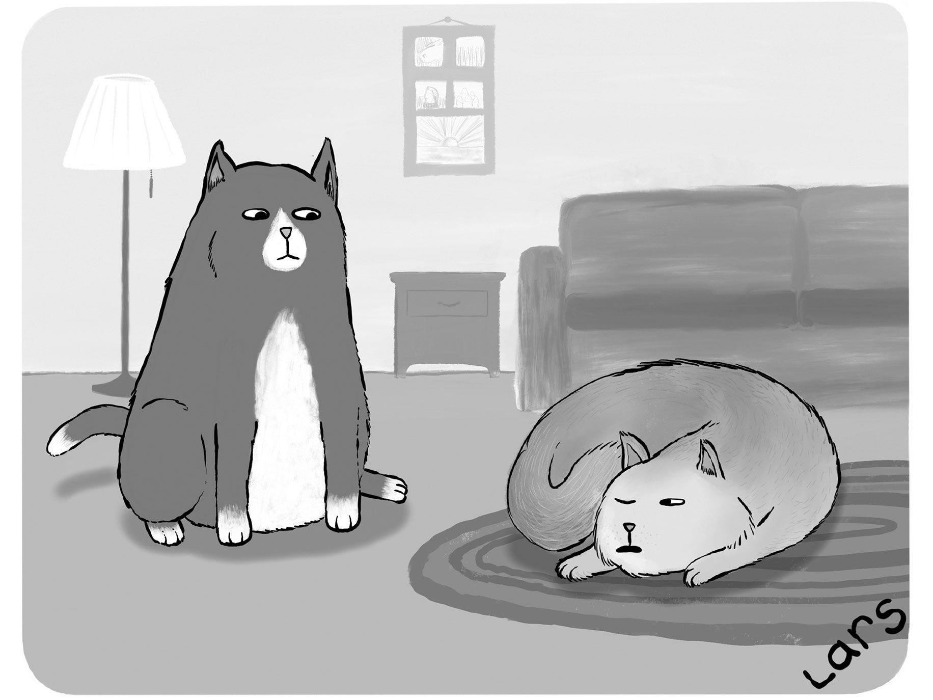 """It's not a catnap. I'm microdozing."""