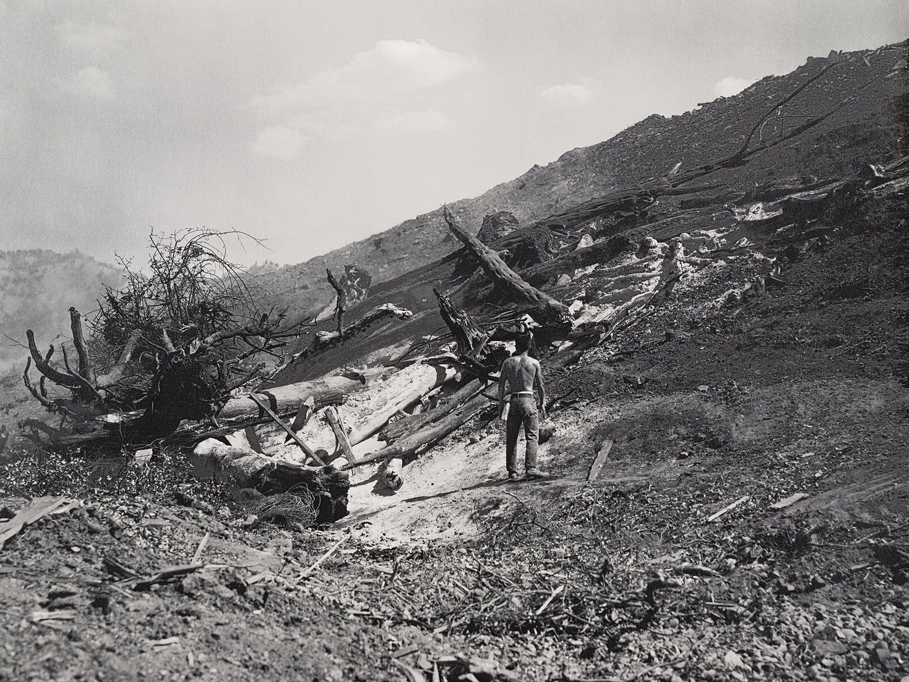 Burning Pile of Trees and Barren Hill by Dorothea Lange captures the demolition of Berryessa Valley, 1956.