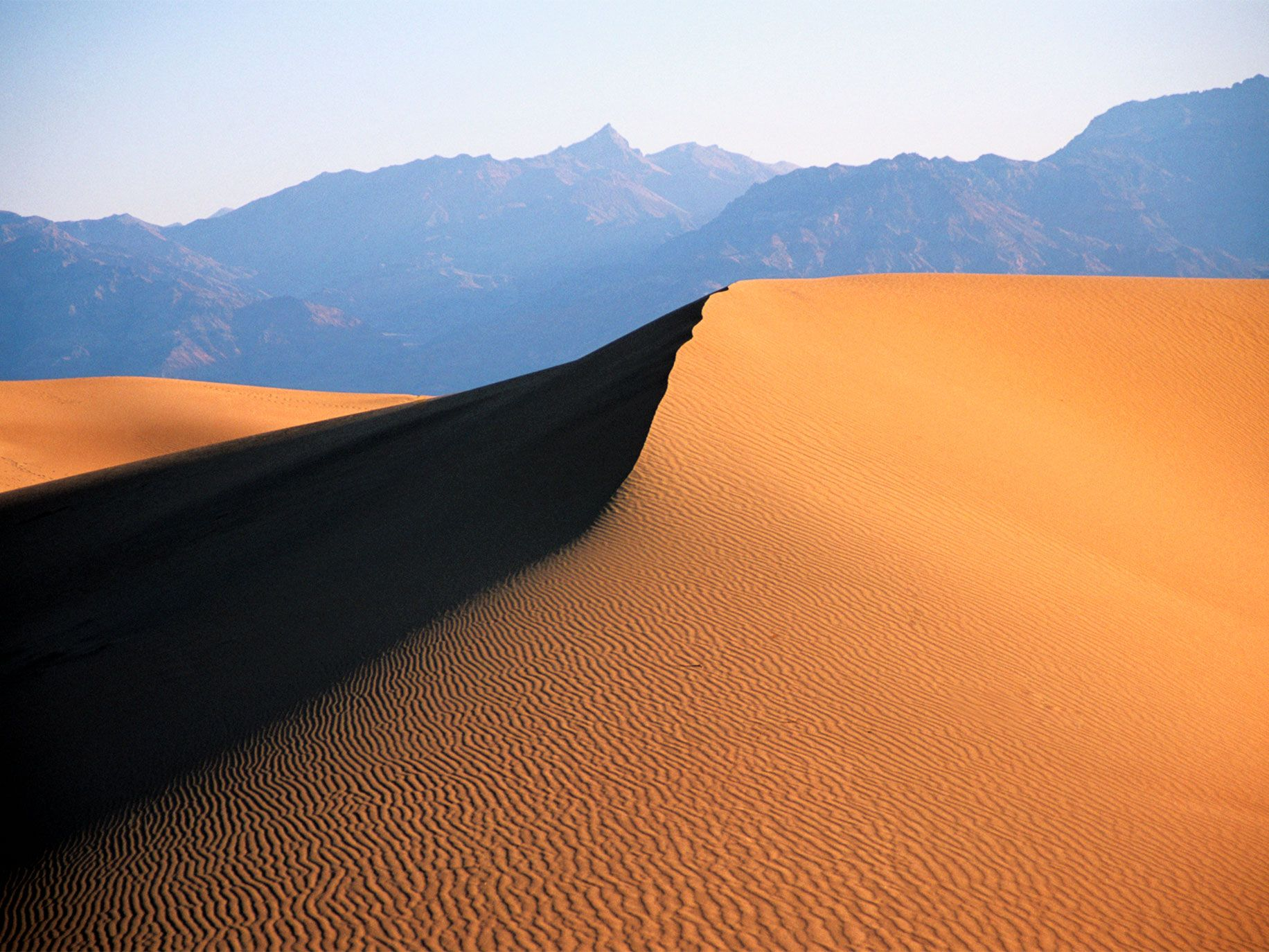 Graceful sand dunes like these cover less than 1 percent of Death Valley National Park and are protected as wilderness.
