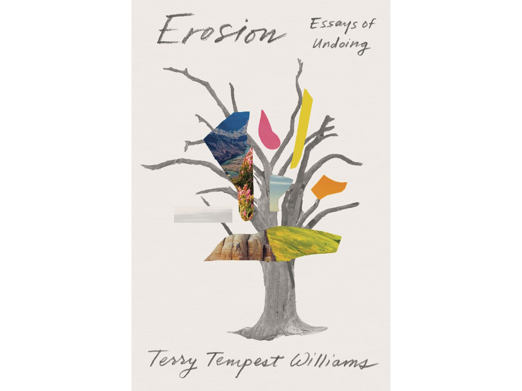 Erosion: Essays of Undoing by Terry Tempest Williams, Farrar, Straus and Giroux/Sarah Crichton Books, 336 pages, $27