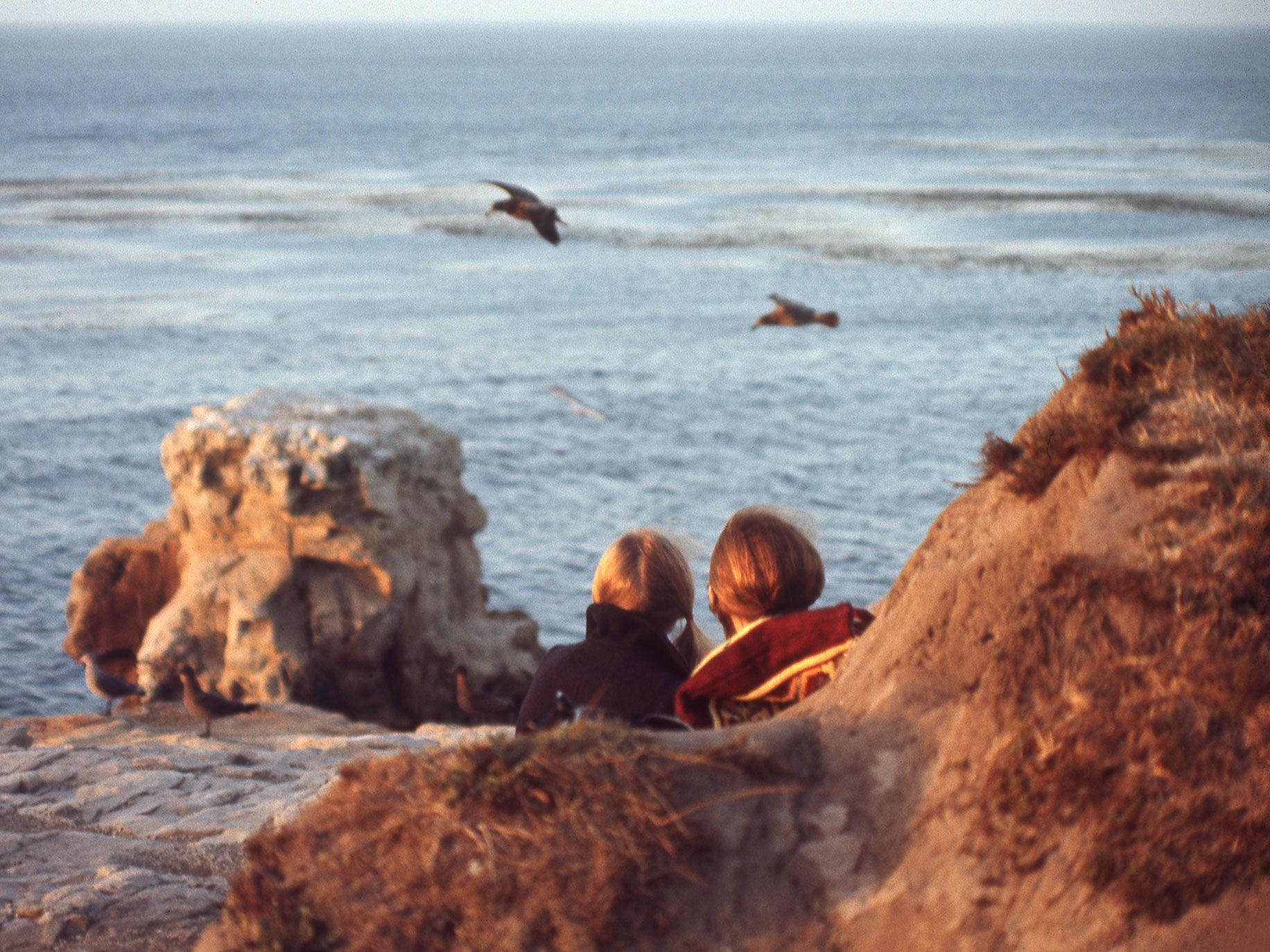 Sunset on the beach in Santa Cruz, California, 1970. The photograph is from Roger Steffens's The Family Acid: California, which looks back at the Golden State from 1968 to 2015.