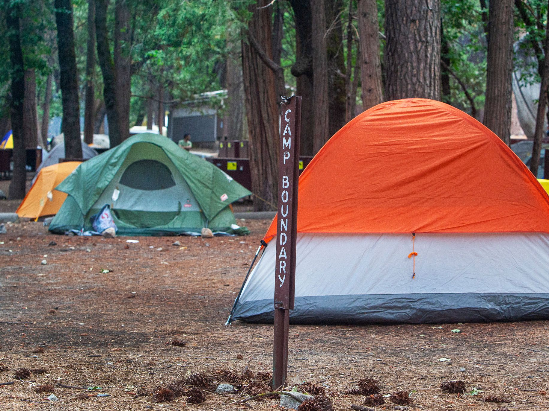 Yosemite's historic Camp 4 serves as a base for mountain climbers from all over the globe.