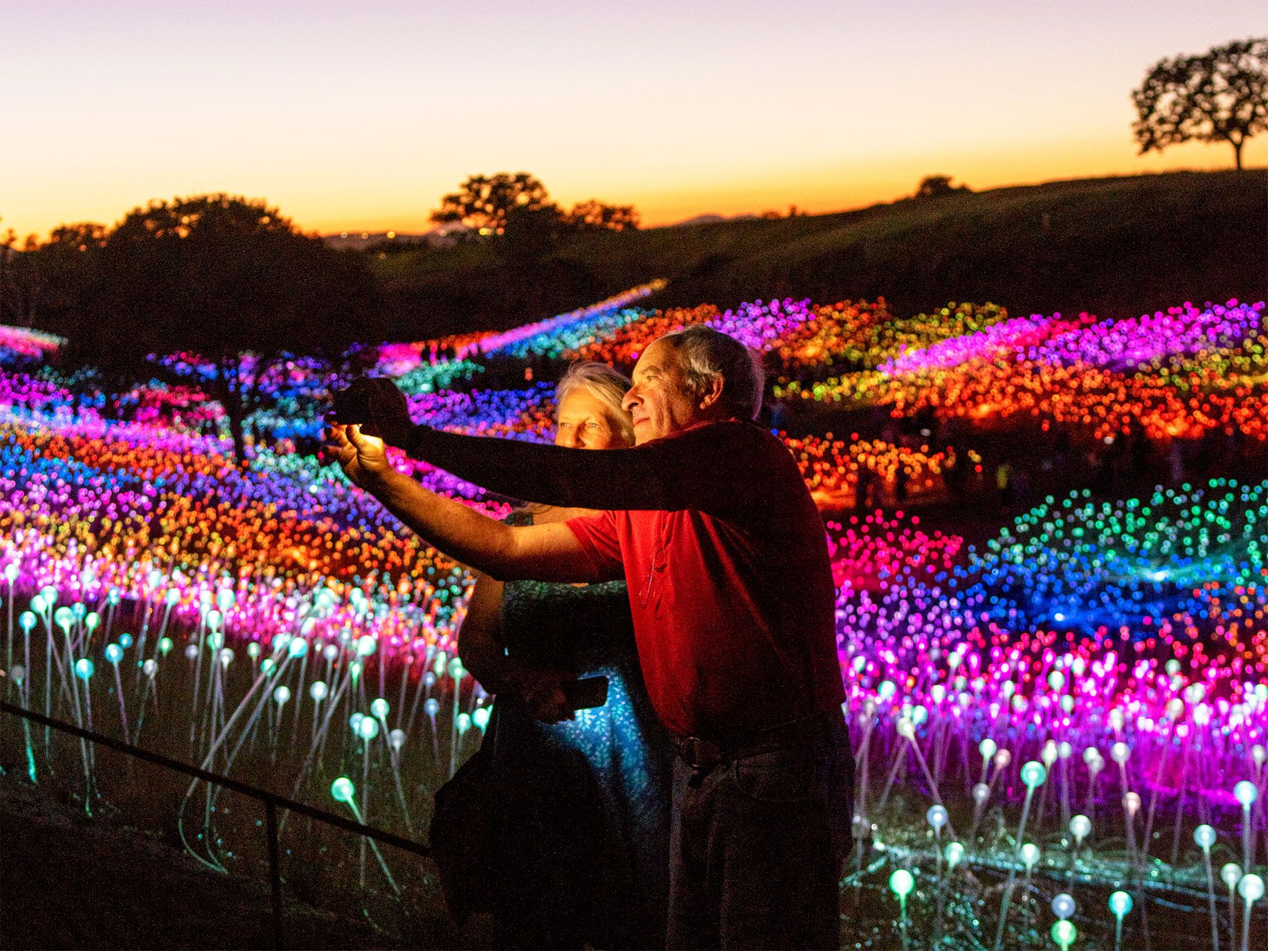 Two visitors snap a selfie in the glow of Bruce Munro's sparkling installation.