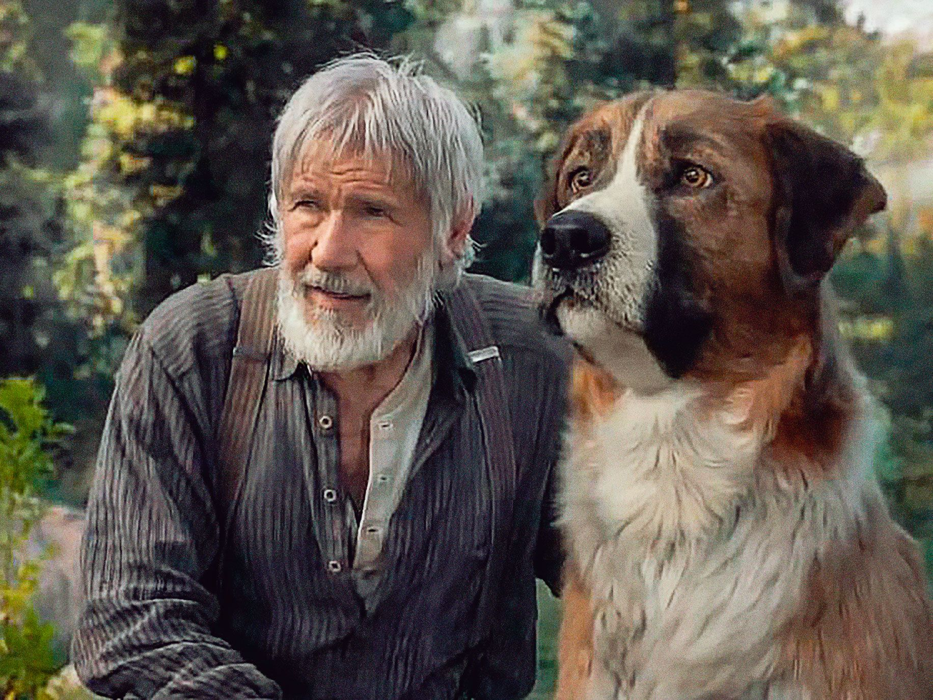 Harrison Ford and a CGI-created Buck in the forthcoming The Call of the Wild.