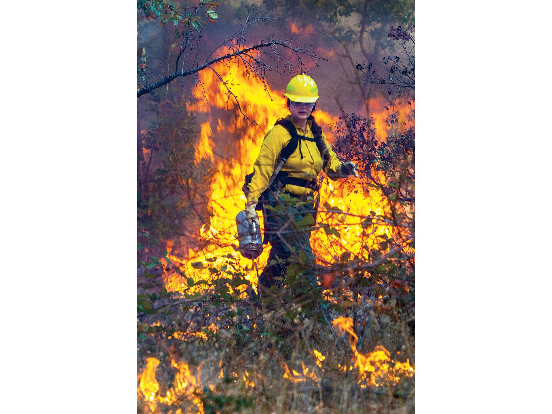 Lena Neuner, 25, participates in a controlled burn organized by the Klamath River Prescribed Fire Training Exchange (TREX) last October.