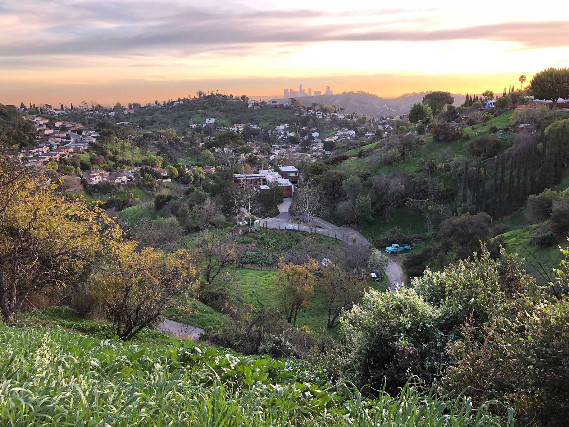 A photo of Angeles skyline and the author's farm (just to the left of blue truck) from a hilltop in Glassell Park.
