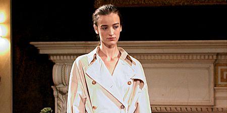 Sleeve, Collar, Dress shirt, Formal wear, Flowerpot, Houseplant, Overcoat, Button, Suit trousers, Costume design,