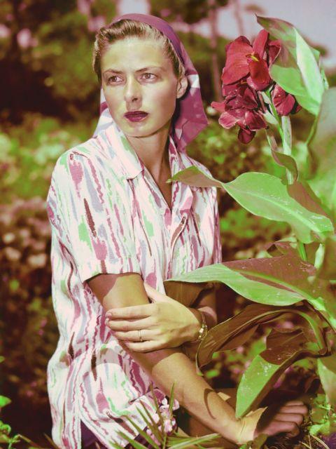 Beauty, Pink, Spring, Botany, Lip, Plant, Flower, Photo shoot, Leaf, Photography,