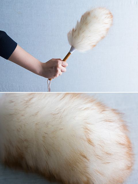 Skin, Brush, Ingredient, Wrist, Fawn, Peach, Natural material, Paint brush, Animal product, Feather,