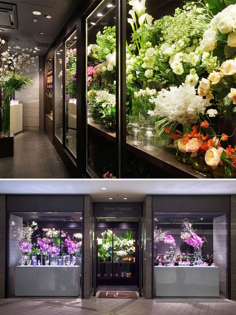 Plant, Flower, Petal, Purple, Fixture, Floristry, Lavender, Violet, Flower Arranging, Floral design,