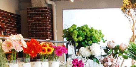 Plant, Flower, Petal, Flowerpot, Floristry, Flower Arranging, Interior design, Bouquet, Floral design, Cut flowers,