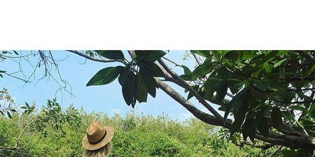 Human, Hat, Human body, People in nature, Reflection, Sun hat, Lake, Back, Fedora, Dock,