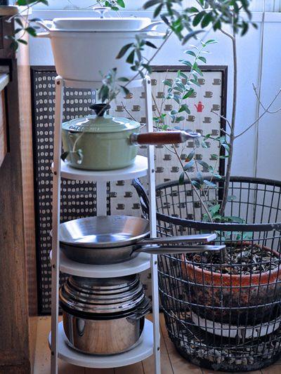 Dishware, Serveware, Porcelain, Ceramic, Pottery, Kitchen appliance, Kitchen appliance accessory, Houseplant, earthenware, Stove,
