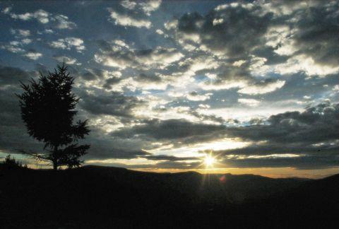 Sky, Cloud, Nature, Tree, Horizon, Sunset, Daytime, Morning, Natural landscape, Evening,