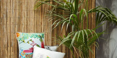Textile, Throw pillow, Cushion, Pillow, Linens, Home accessories, Creative arts, Houseplant, Bedding,
