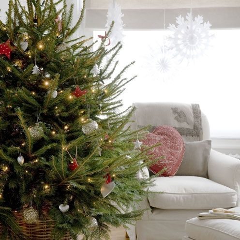 what type of christmas tree should you buy christmas decor