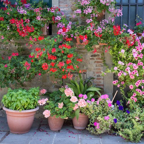 Attach Pots To A Sunny Wall To Save On Space Or Buy Baskets For A Rustic  Garden Look!