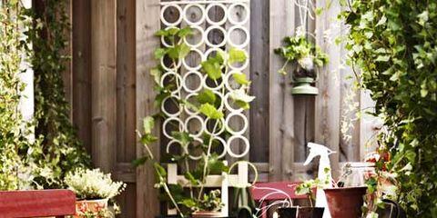 Plant, Flowerpot, Table, Outdoor table, Furniture, Outdoor furniture, Garden, Backyard, Patio, Yard,