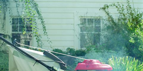 Grass, Mower, Lawn, Lawn mower, Garden, Auto part, Yard, Machine, Outdoor power equipment, Backyard,