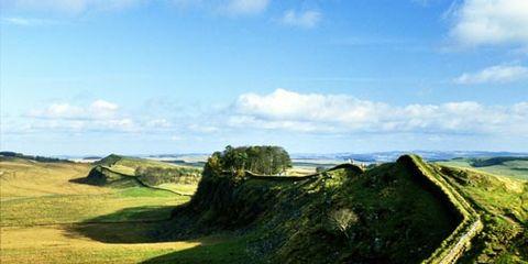 Nature, Grass, Green, Natural landscape, Landscape, Highland, Grassland, Plain, Hill, Slope,