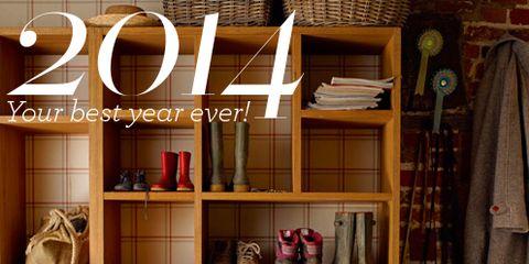 Lion, Shelving, Shelf, Big cats, Felidae, Terrestrial animal, Cabinetry, Bag, Hutch, Fur,