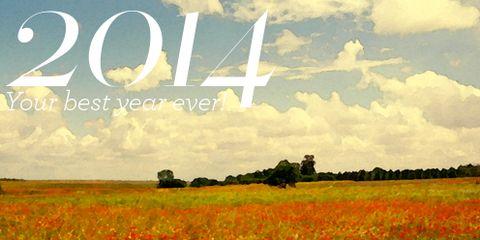 Natural landscape, Flower, Petal, Agriculture, Field, Wildflower, Ecoregion, Font, Grassland, Plain,