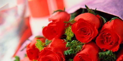 Petal, Flower, Red, Bouquet, Floristry, Cut flowers, Flowering plant, Rose family, Garden roses, Rose order,