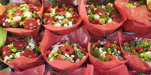 Red, Petal, Pink, Cut flowers, Floristry, Peach, Annual plant, Herbaceous plant, Artificial flower, Flower Arranging,
