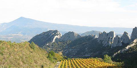 Agriculture, Mountainous landforms, Plant community, Field, Farm, Plantation, Mountain, Rural area, Hill, Crop,