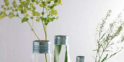 Liquid, Fluid, Glass, Bottle, Drinkware, Oil, Artifact, Amber, Aqua, Vase,