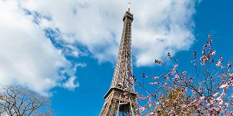 Grass, Daytime, Branch, Tower, Cloud, Spire, Public space, Tourism, Landmark, Urban area,