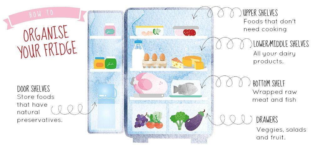 Storing Food on Fridge Shelves What