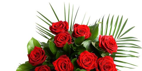 Petal, Flower, Red, Bouquet, Cut flowers, Rose family, Floristry, Flowering plant, Flower Arranging, Rose order,