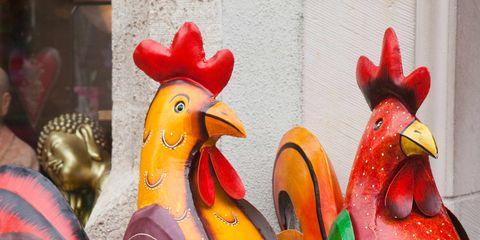 Beak, Vertebrate, Bird, Phasianidae, Red, Galliformes, Poultry, Orange, Carmine, Fowl,