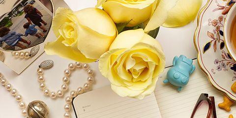 Petal, Serveware, Dishware, Cup, Scissors, Flowering plant, Drinkware, Tea, Teacup, Garden roses,