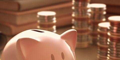 Saving, Skin, Piggy bank, Pink, Domestic pig, Suidae, Snout, Toy, Livestock, Peach,