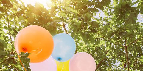 Branch, Balloon, Party supply, Twig, Sunlight, Peach,