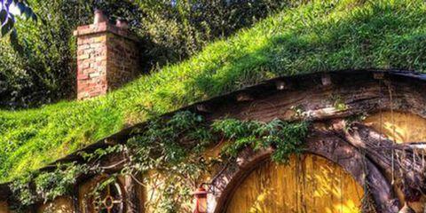 Plant, Shrub, Garden, Yard, Outdoor furniture, Cottage, Village, Backyard, Outdoor table, Brick,