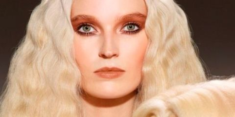 Lip, Brown, Hairstyle, Skin, Dog breed, Eyebrow, Dog, Iris, Eyelash, Jaw,
