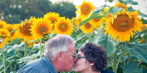 Sunflower, Yellow, Petal, Flower, Happy, People in nature, Summer, Kiss, Agriculture, Romance,
