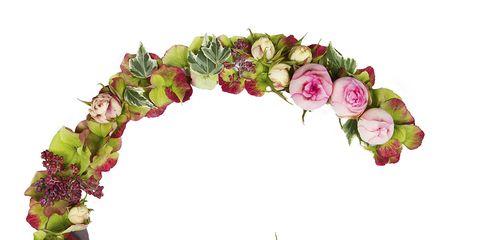 Petal, Pink, Cut flowers, Floral design, Artificial flower, Flower Arranging, Circle, Illustration, Creative arts, Graphics,