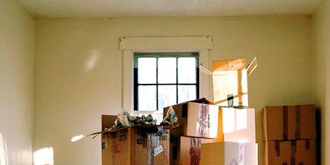 Wood, Flooring, Floor, Room, Hardwood, Interior design, Wood flooring, Laminate flooring, Wood stain, Carnivore,