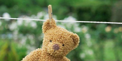 Teddy bear, Stuffed toy, Toy, Plush, Textile, Bear, Fawn, Canidae,