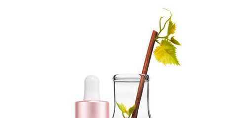Liquid, Brown, Fluid, Peach, Bottle, Cosmetics, Grey, Beige, Chemical compound, Lavender,